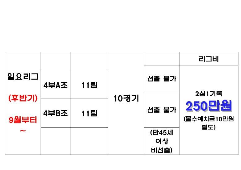 ㈜대한스포츠그룹    익사이팅 2019 하반기 나눔리그 모집완성1_page-0004.jpg