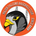 Major Falcons