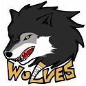 한림의대 wolves